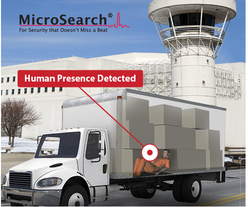 MicroSearch